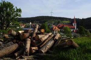 Sawed firewood in pile
